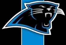 Panthers  / by Christie Ingle