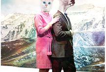 Animals masque...