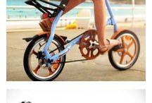 CicloStrida
