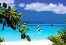 Caribbean Beaches / Whether you have visited the Caribbean in person or viewed its beautiful scenery online or in print, the Caribbean is a place that leaves a permanent impression on one's soul with the turquoise water, white sand and brightly coloured homes and shops.