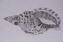 My L1 Art