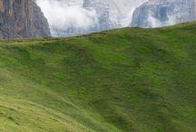 ON  THE  GREEN,  GREEN  LAWN / Naturflächen mit Wiese, Rasen & Co.