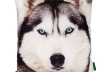Winter Animals - Zimowe Zwierzaki <3 / W zimie nie może zabraknąć zimowych zwierzaków!