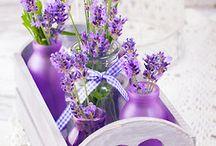 Purple and White/Cream