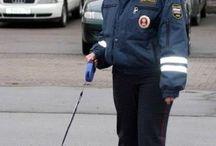 rus police dog