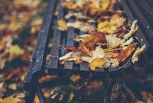 There's something about Autumn...