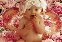 CUTE, CUTE BABBIES BY ANNE GEDDES