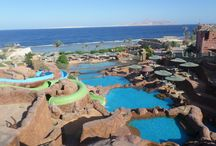 Egypt / My First Holiday <2