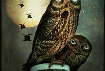 Owls / by Mya Leigh