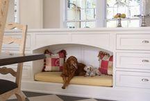 Casa para Pet / Decor