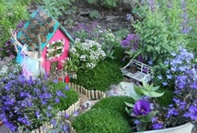 Magical garden / All things whimsical
