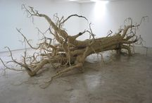 La Lente sull' Arte Contemporanea