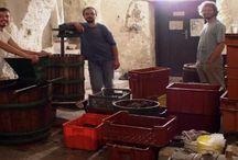 Authentic winemaking