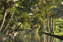 The Best Places to Go this Season / Indian Backwaters are beautiful destinations to visit