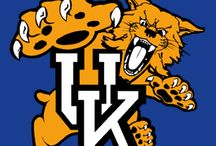 I love the Kentucky Wildcats!! / by Christy Vicini