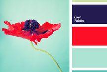 bathroom/kitchen paint colours