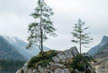 Bergwelt, Natur