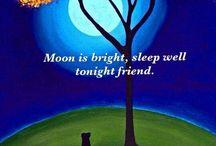 луные ночи