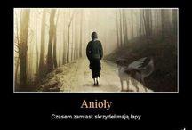 .. CYTATY...