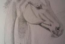 my drawings...