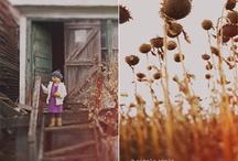story boarding  / by Ellie Orbanek