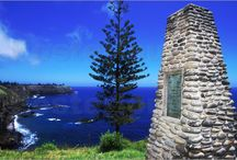 Norfolk Island National Park / Our small team keeps busy managing feral animals and weeds, rehabilitating the park and botanic garden and protecting our rare and native creatures. Our seabirds are an important feature of the park. - See more at: http://www.parksaustralia.gov.au/norfolk/people-place/conservation.html#sthash.sIHj3qSG.dpuf / by Parks Australia