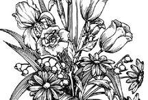 Flower vase drawings