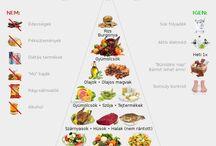 fogyaszto piramis