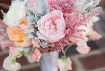 Pretty Pretty Flowers / ahhh bouquets and boutonnieres  / by Sarah Jane Powell