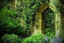 Woods & Cottages