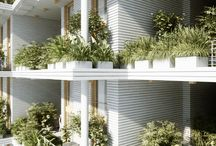 Façade Maison et mur vegetal