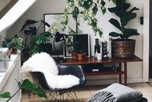 HOME | GREEN VIBES / Vegetal, flowers, cactus and home decor