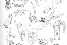Sketches - Animalia