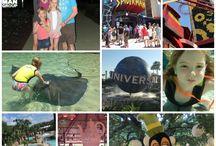 Disney & Universal Vacation
