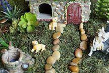 Mini fairy Gardens!