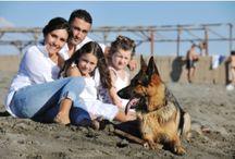 Family Travel Pets
