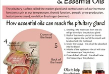 Essential Oils & Health / by Wade Harris
