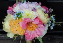 Wedding Bouquets / by Alison Reid