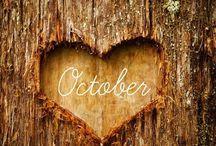 days months seasons