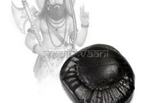 Shaligram Shilas Buy Online from Vedicvaani.com from India