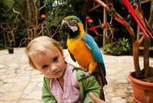 DZIECI I ZWIERZĄTKA   / ...przyjaźń dzieci ze zwierzątkami.