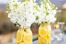 Centerpieces/Flowers