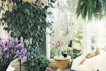 Botanical interior