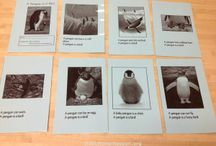 Ideas for MFW K: Penguin