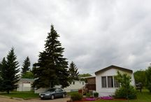 Land for lease and homes for sale in Ponoka, AB / Check out these great lands for lease and homes for sale in Ponoka, AB