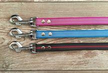 Hundesportartikel / Leinen, Halsbänder, Bringhölzer, Beisswürste und mehr