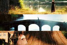 Favorites & Random / by Breanna Scalf