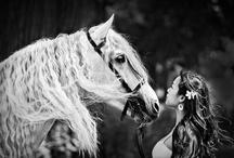 Photography Inspiration / by Rhonda Waymire Cline