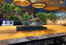 Vergés en Millesime Madrid 2015 / Presentación de los productos de La Granja Desing en Millesime Madrid