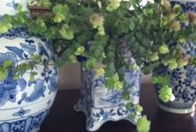Flowers: Beautiful Bouquets & Blossoms / : Beautiful Flower Bouquets & Blossoms